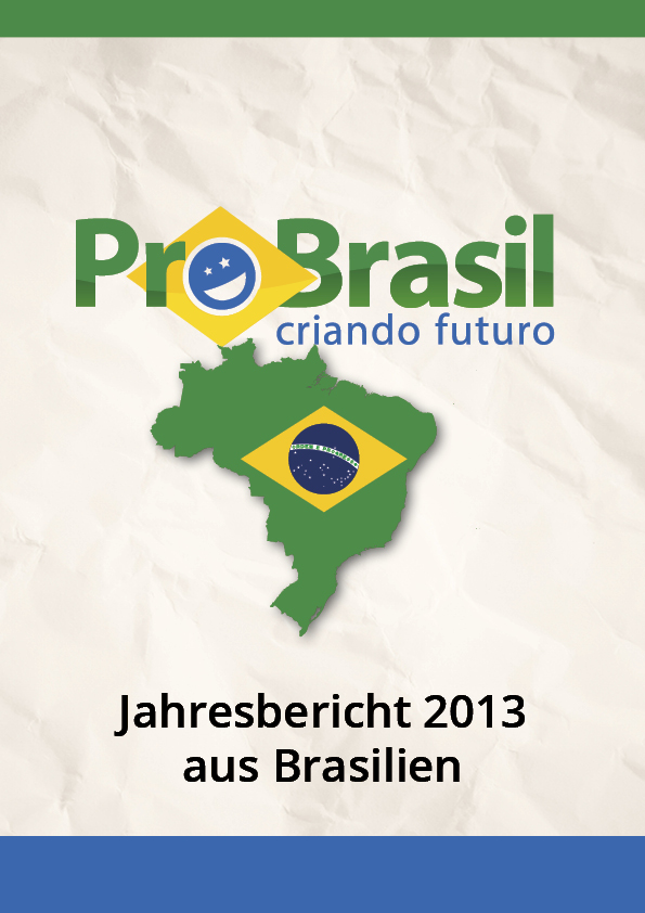 Bericht Cover Br 2013